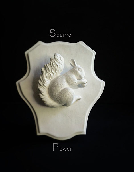 Squirrel-Power