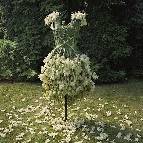 Dress-Bio-