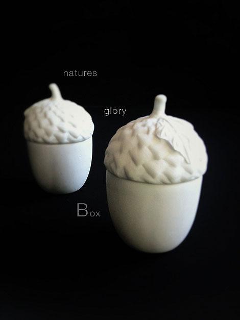 Natures-Glory-Box