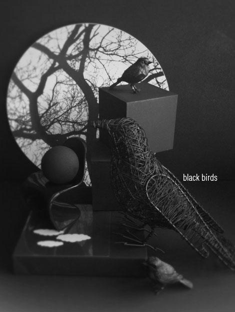 Black-birds
